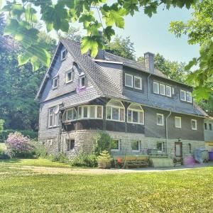 ferienhaus-grandwilla-willingen-sauerland-buchen-002