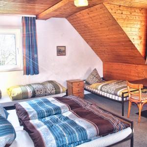 ferienhaus-grandwilla-willingen-sauerland-buchen-003