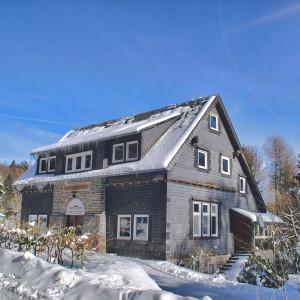 ferienhaus-grandwilla-willingen-sauerland-buchen-009